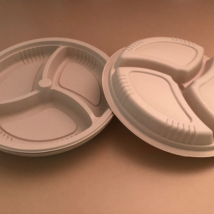 bbm fully biodegradable eco friendly dishes